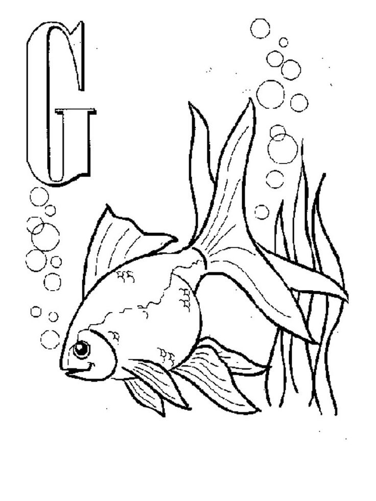 pdf Free Printable Goldfish Coloring Pages For Kids for teens