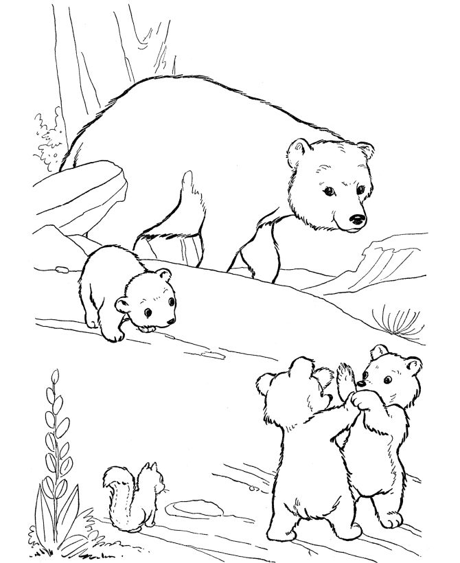 online Free Printable Polar Bear Coloring Pages For Kids toddler