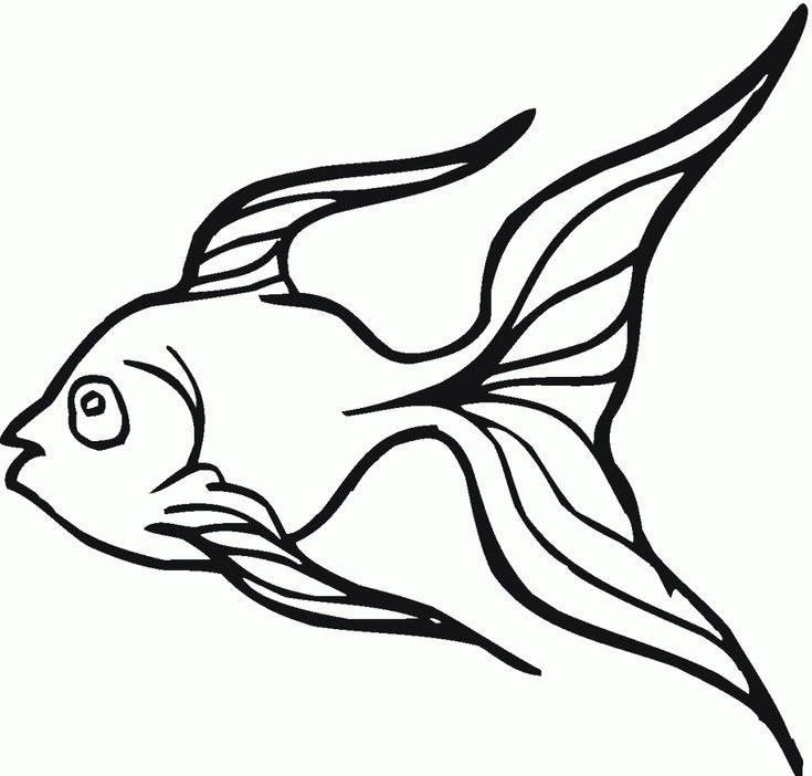 printable Free Printable Goldfish Coloring Pages For Kids free