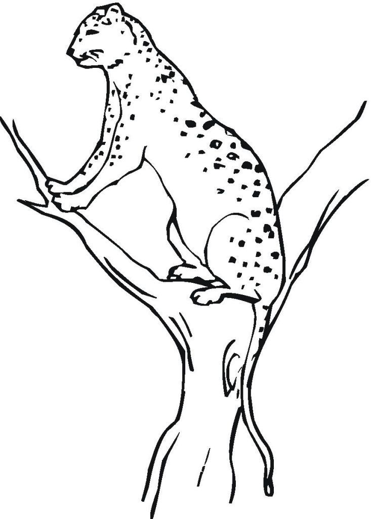 for teens Free Printable Cheetah Coloring Pages For Kids online