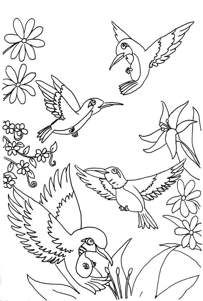 free Free Printable Hummingbird Coloring Pages For Kids easy