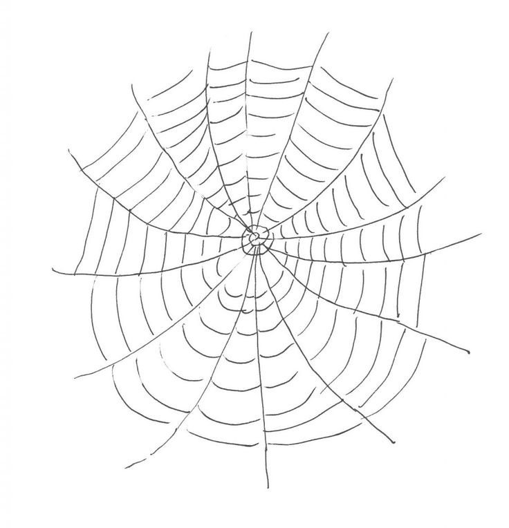 photograph relating to Printable Spider called printable Absolutely free Printable Spider Internet Coloring Webpages For Children
