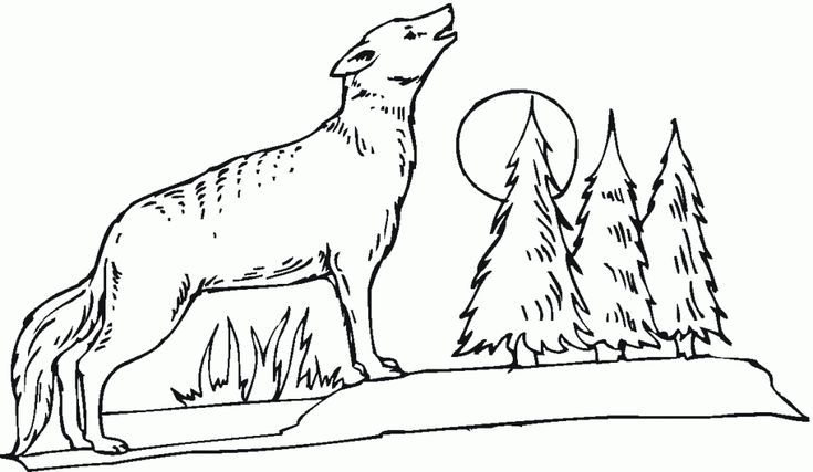 toddler Free Printable Coyote Coloring Pages For Kids simple