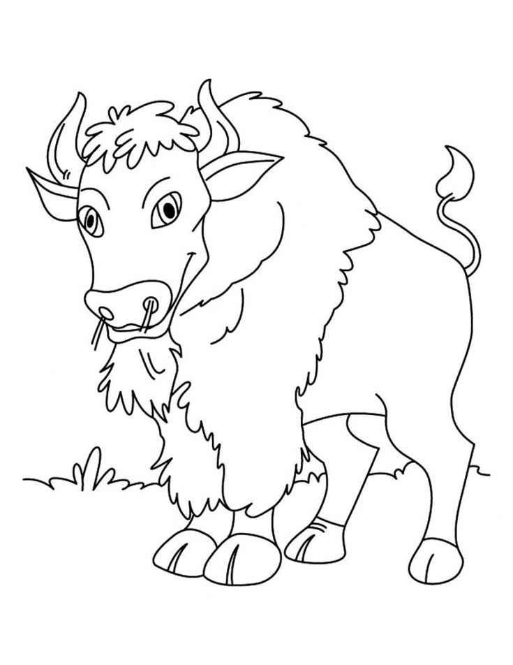 already colored Free Printable Bison Coloring Pages For Kids to print out