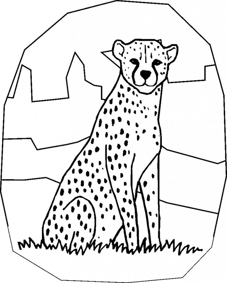 online Free Printable Cheetah Coloring Pages For Kids toddler
