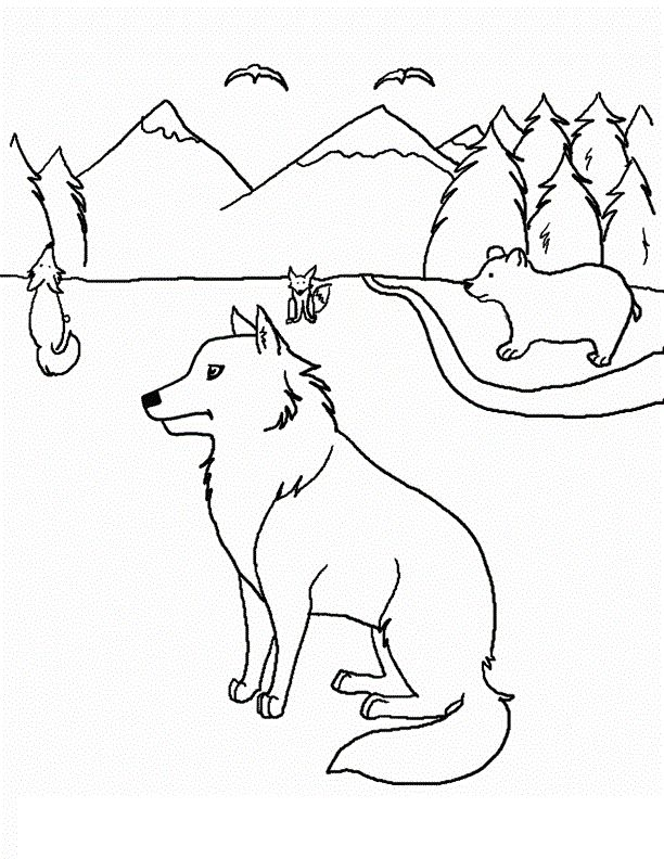 preschool Free Printable Coyote Coloring Pages For Kids printable