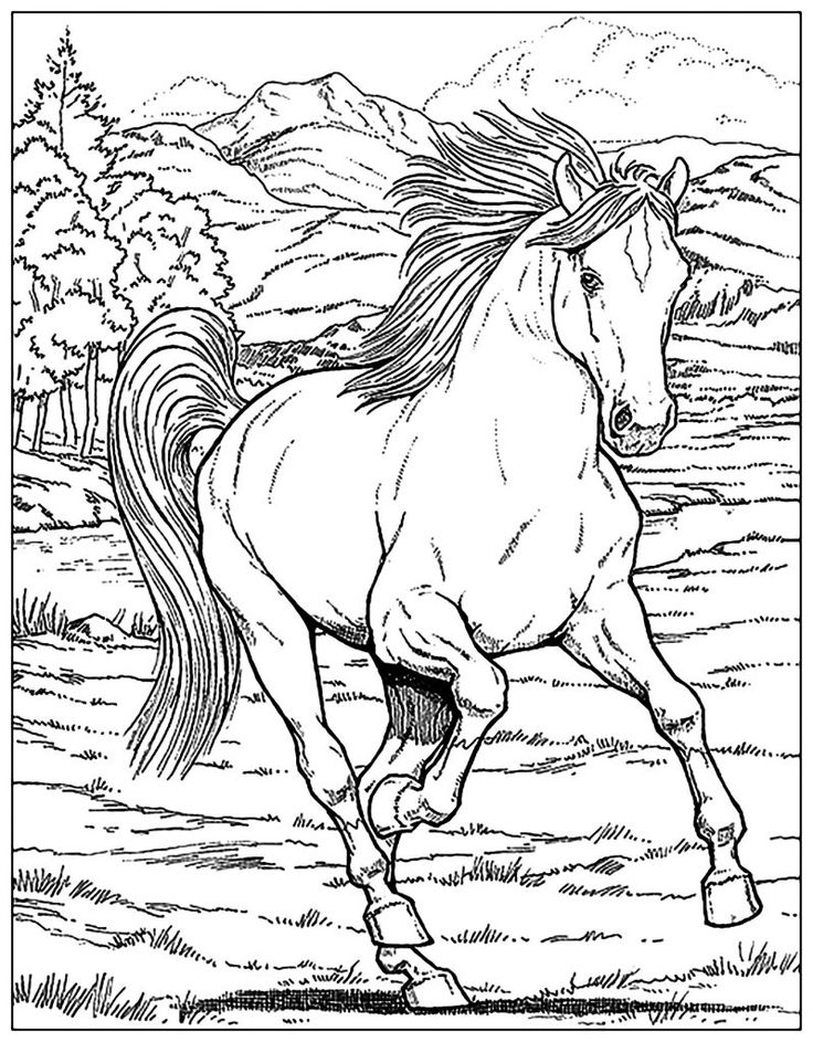 for kids Horse Coloring Pages for Adults - Best Coloring Pages For Ki... for sunday school