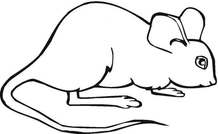 easy Free Printable Mouse Coloring Pages For Kids for kindergarten