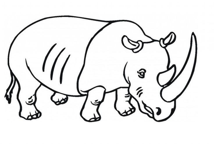 for toddlers Free Printable Rhinoceros Coloring Pages For Kids to print out
