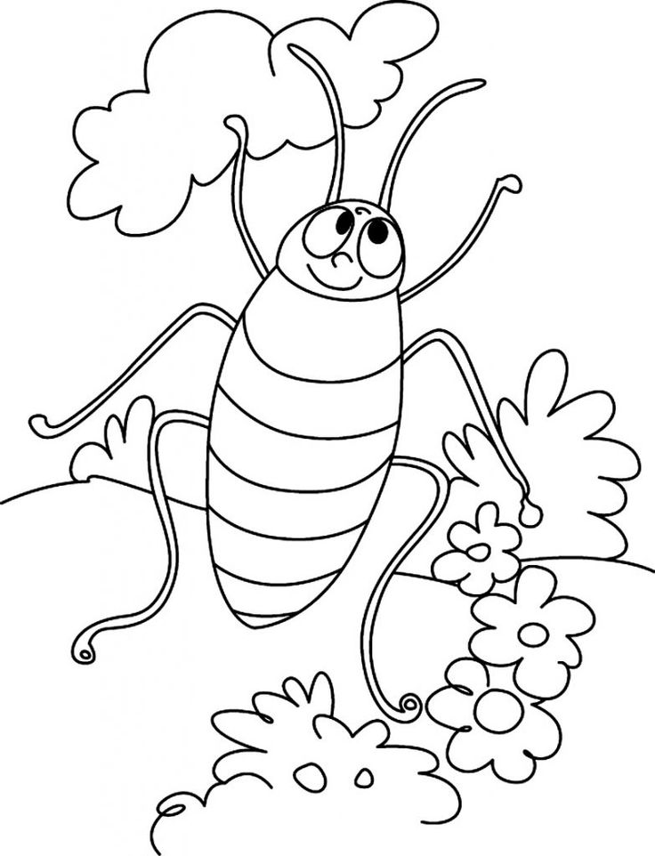 preschool Free Printable Cockroach Coloring Pages For Kids for adults