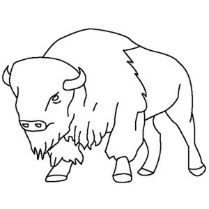 preschool Free Printable Bison Coloring Pages For Kids toddler