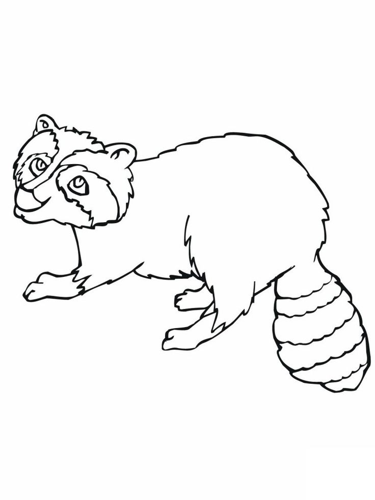 for girls Free Printable Raccoon Coloring Pages For Kids online