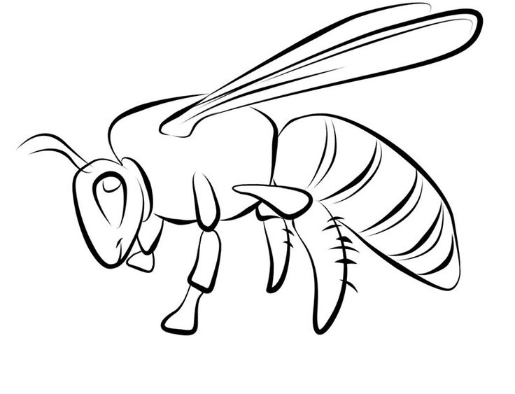toddler Free Printable Bee Coloring Pages For Kids toddler