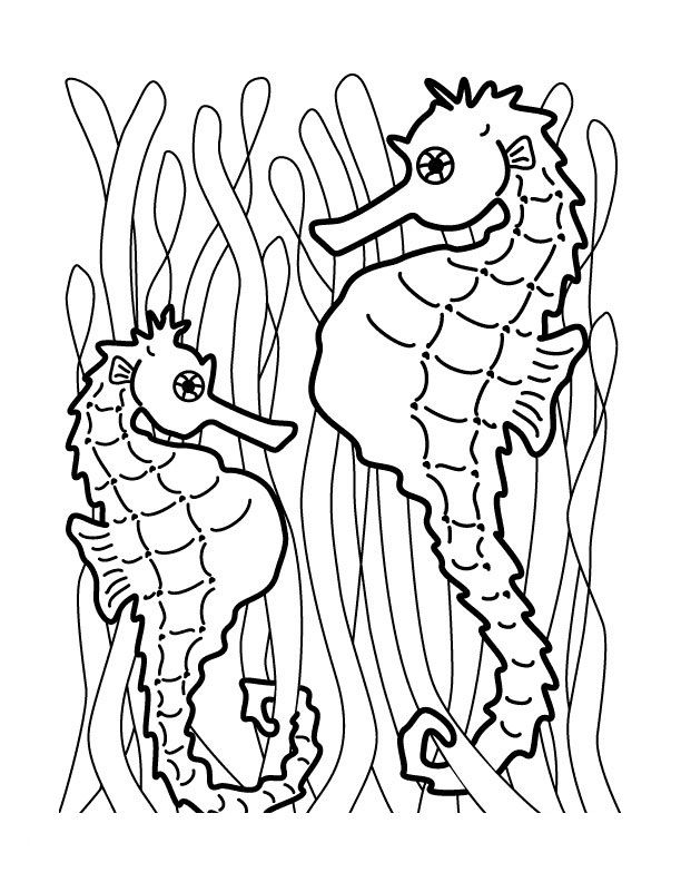 online Free Printable Seahorse Coloring Pages For Kids toddler