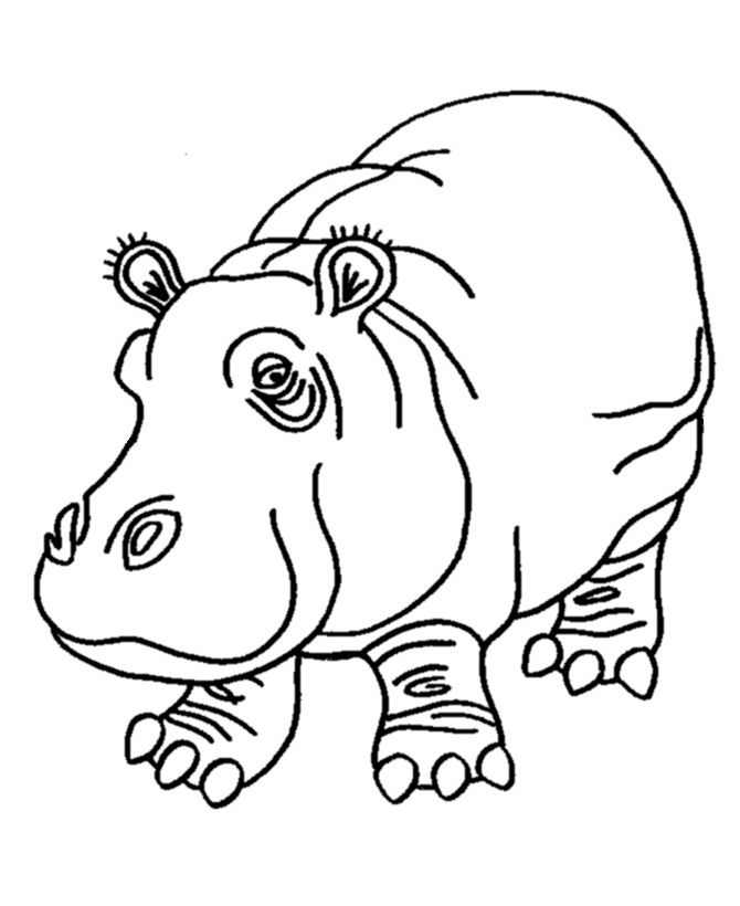 for kids Free Printable Hippo Coloring Pages For Kids pdf