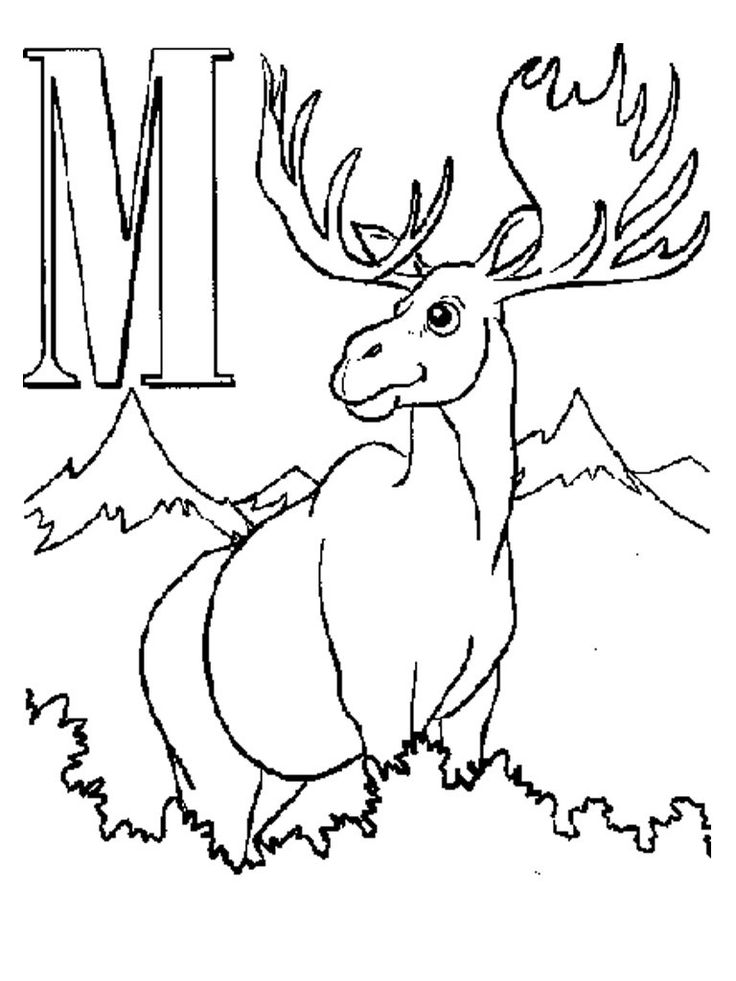 for teens Free Printable Moose Coloring Pages For Kids to print out