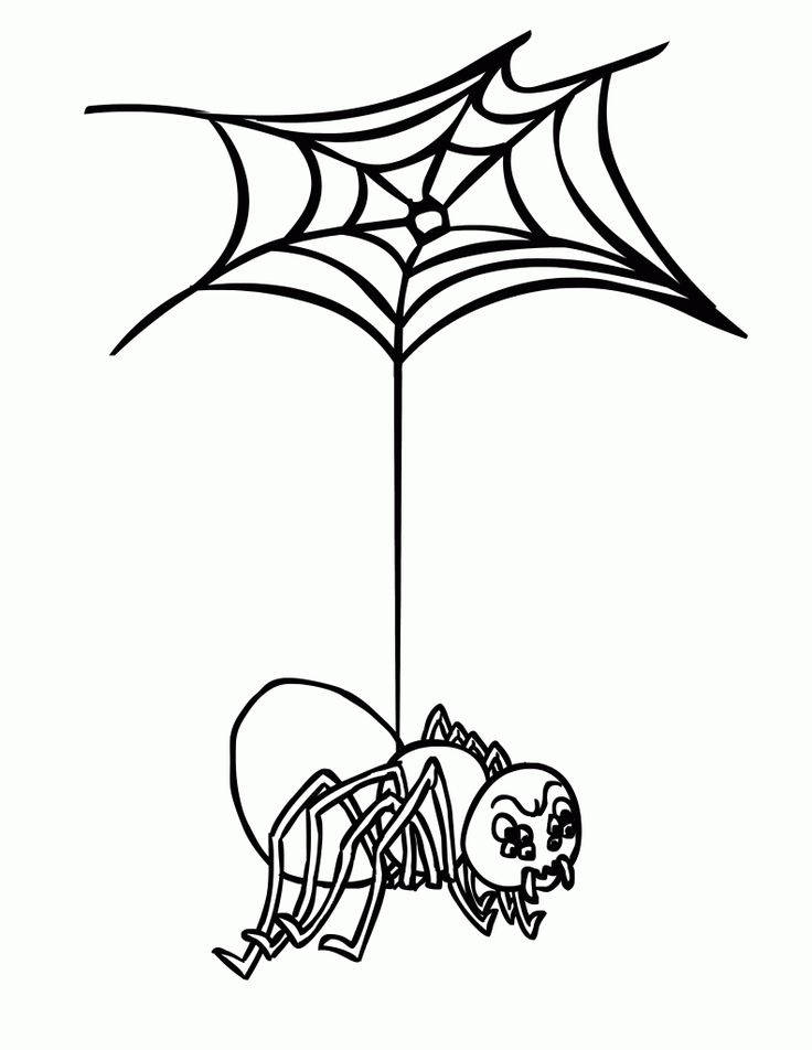 for sunday school Free Printable Spider Web Coloring Pages For Kids for kids