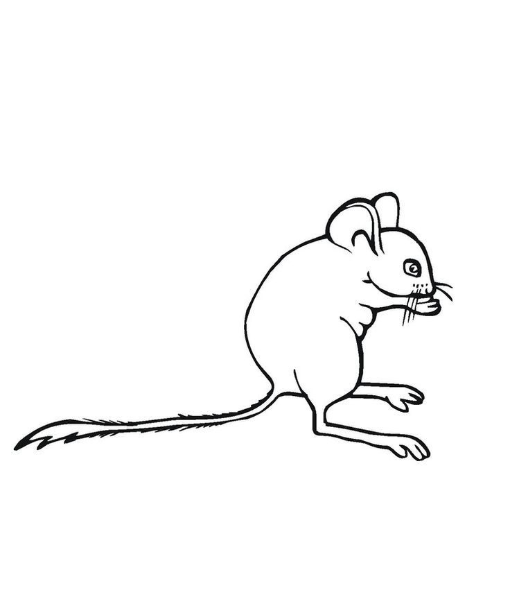 for kindergarten Free Printable Mouse Coloring Pages For Kids preschool