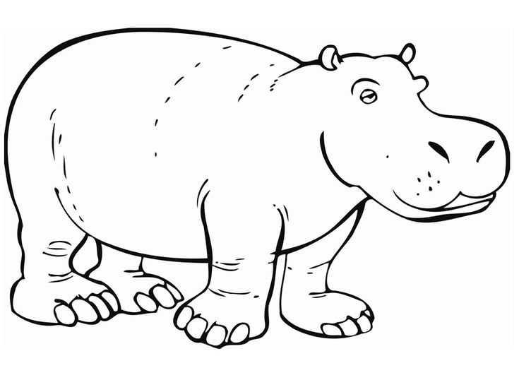 free printable Free Printable Hippo Coloring Pages For Kids for toddlers