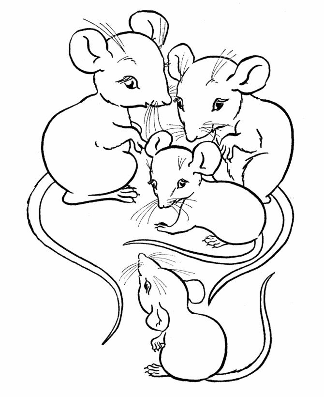 for boys Free Printable Mouse Coloring Pages For Kids toddler