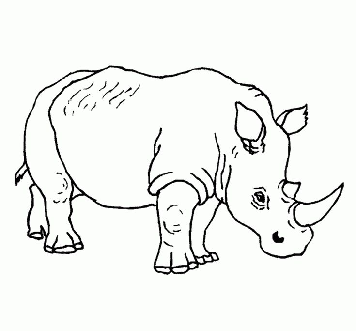 free printable Free Printable Rhinoceros Coloring Pages For Kids easy
