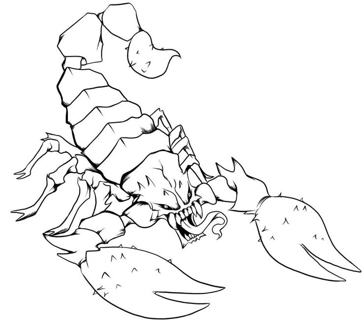 online Free Printable Scorpion Coloring Pages For Kids for sunday school