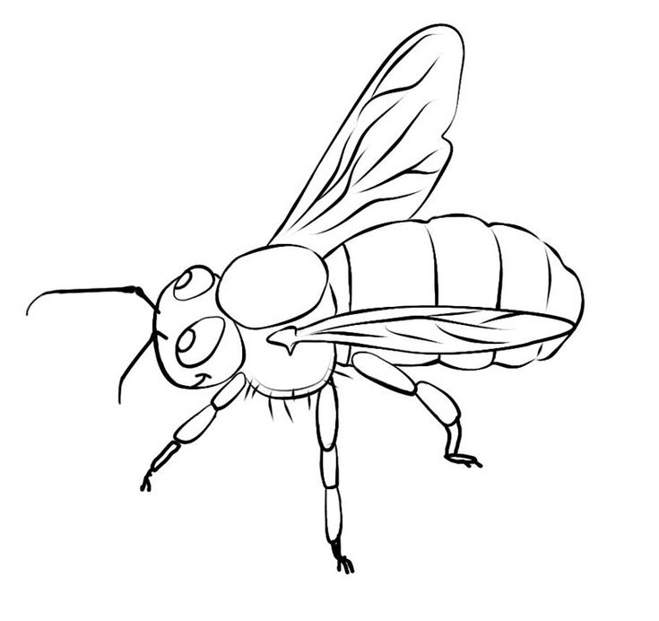 for adults Free Printable Bee Coloring Pages For Kids for toddlers