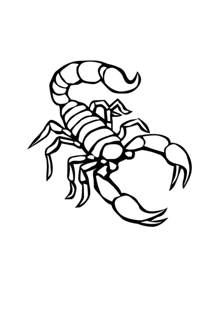 toddler Free Printable Scorpion Coloring Pages For Kids online