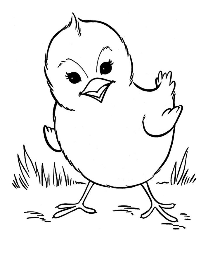preschool Free Printable Farm Animal Coloring Pages For Kids for sunday school