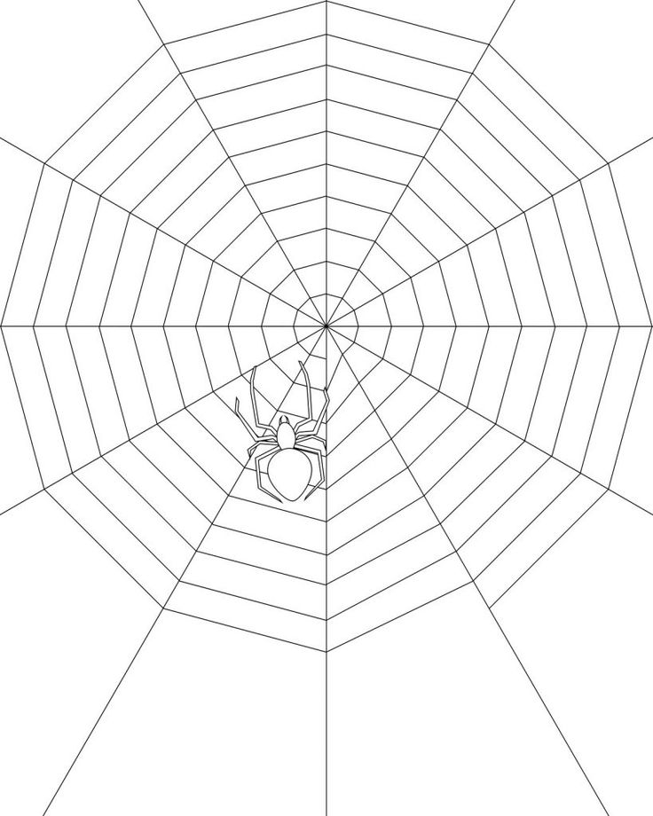 free printable Free Printable Spider Web Coloring Pages For Kids easy