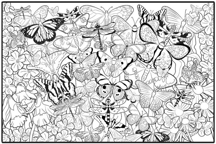simple Butterfly Coloring Pages for Adults - Best Coloring Pages Fo... toddler