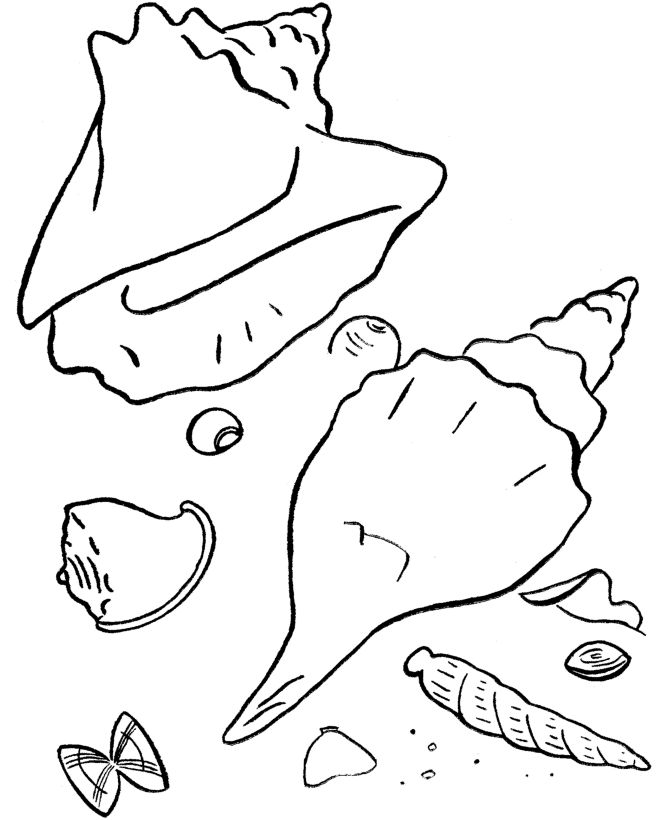 for adults Beach Coloring Pages - Beach Scenes & Activities free