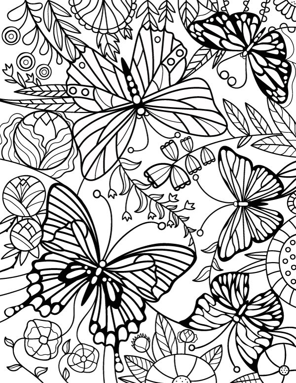free printable Butterfly Coloring Pages for Adults - Best Coloring Pages Fo... for boys