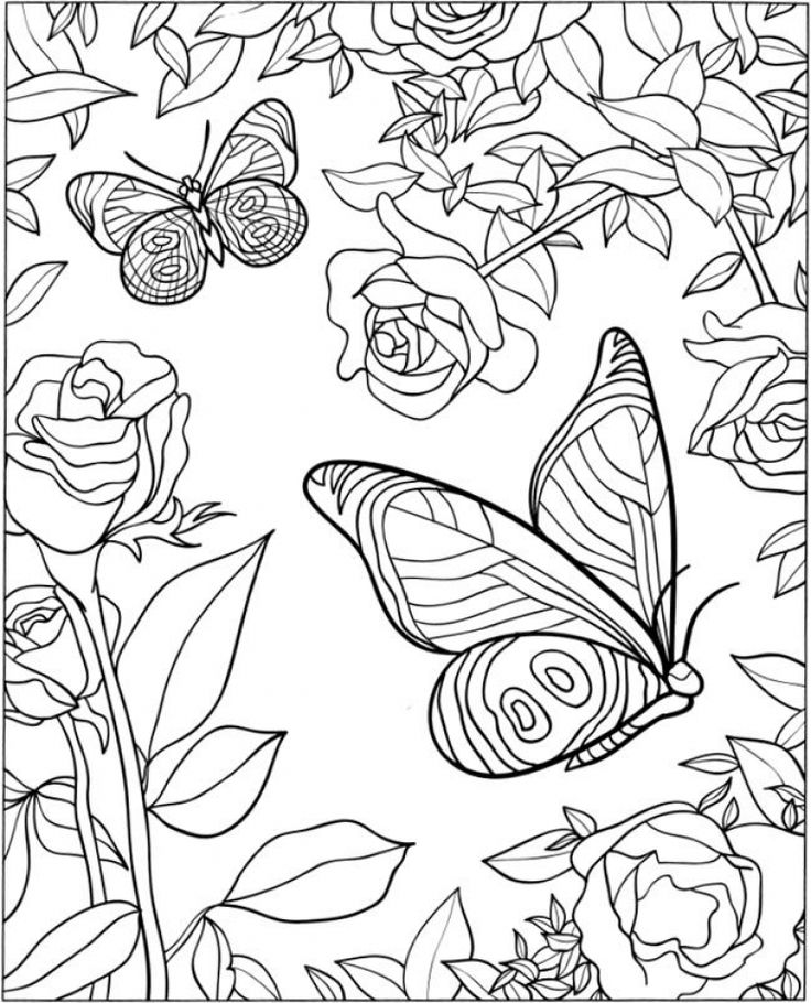 for boys Butterfly Coloring Pages for Adults - Best Coloring Pages Fo... toddler