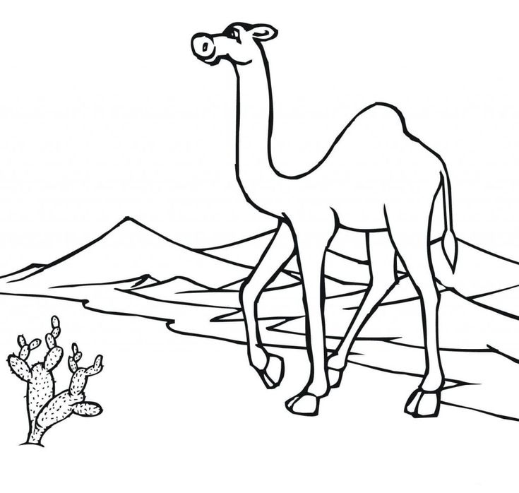 for teens Desert Coloring Pages - Best Coloring Pages For Kids free