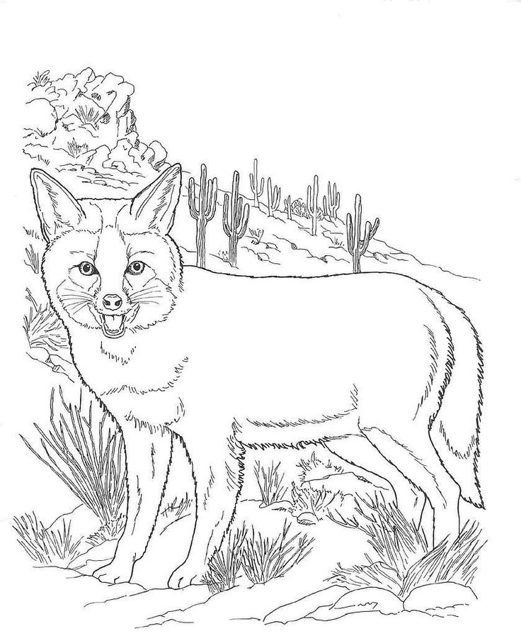 for adults Desert Coloring Pages - Best Coloring Pages For Kids for sunday school