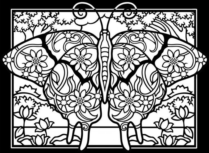 easy Butterfly Coloring Pages for Adults - Best Coloring Pages Fo... for kindergarten