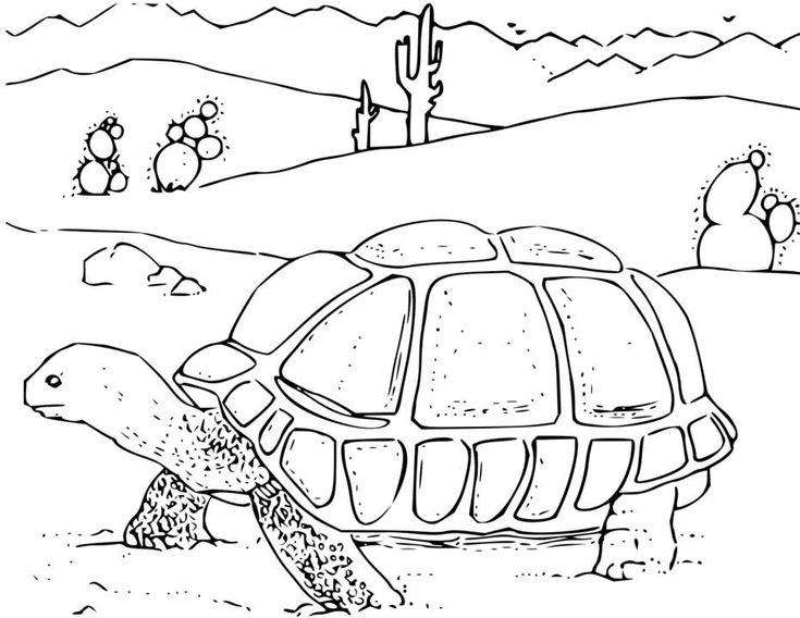 for toddlers Desert Coloring Pages - Best Coloring Pages For Kids easy
