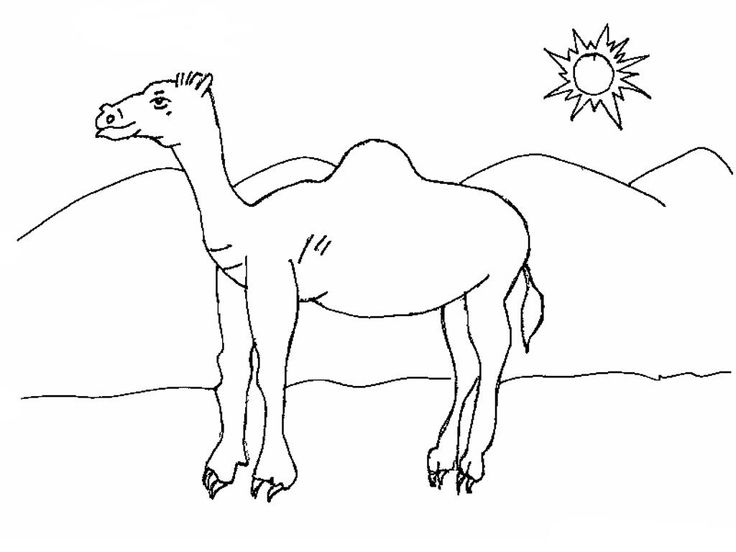 printable Desert Coloring Pages - Best Coloring Pages For Kids for girls