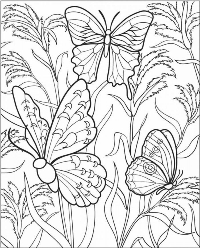 for teens Butterfly Coloring Pages for Adults - Best Coloring Pages Fo... for kids