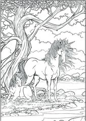 printable Unicorn Coloring Pages for Adults - Best Coloring Pages For ... free printable