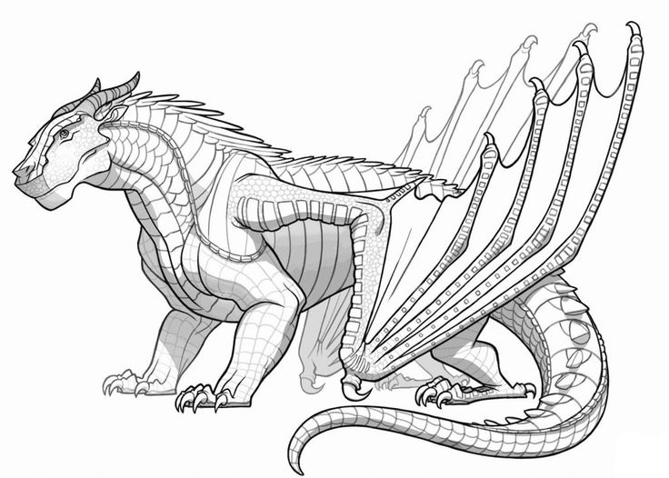 for teens Dragon Coloring Pages for Adults - Best Coloring Pages For K... for sunday school