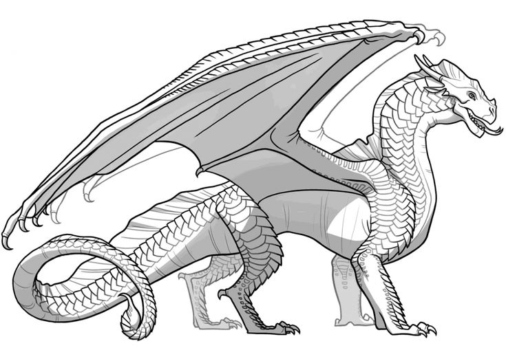 already colored Dragon Coloring Pages for Adults - Best Coloring Pages For K... easy