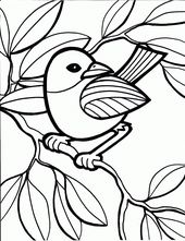 Printable Coloring Pictures for Kids Bird