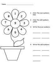 Flower Color by Number Activity Sheets for Kindergarten | Learning Printable