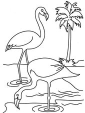 Flamingo Drawing Coloring Pages for Kids | Learning Printable